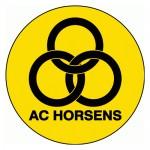 DK-horsens-500x500