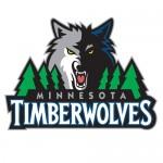 Basket-Minnesota-timberwolves-500x500